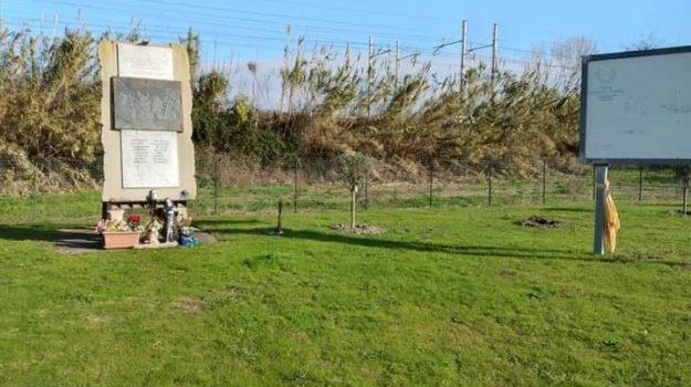 albero di ulivo rubato, ciclisti, Bernardo Marasco, Catanzaro, Cronaca