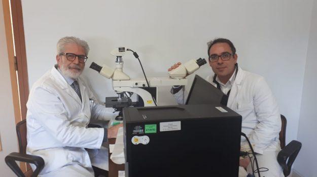 coronavirus, meno cure, studio, Antonio Ieni, Giovanni Tuccari, Messina, Cronaca