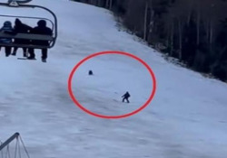 Romania: lo sciatore inseguito da un grosso orso in mezzo alla pista Lo sciatore è riuscito a distrarre l'animale lanciandogli lo zaino - CorriereTV