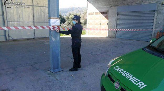 capannone abusivo, carabinieri forestali, denuncia, sequestro, torano castello, Cosenza, Cronaca