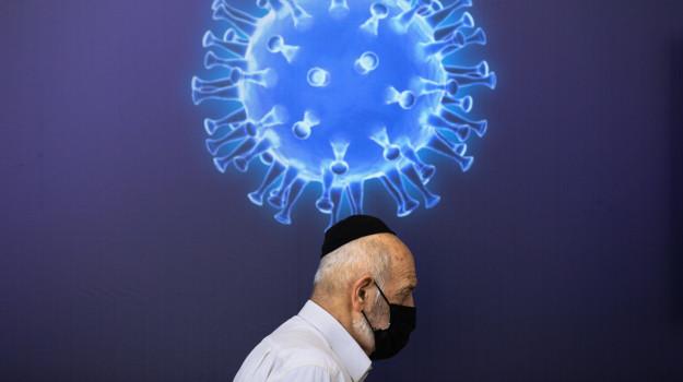 coronavirus, sanità, Calabria, Cronaca