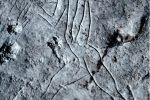 Palermo e i suoi graffiti di 13mila anni fa, riaprono le grotte dell'Addaura
