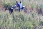 'Ndrangheta, armi e droga sepolte in campagna. I video e le intercettazioni