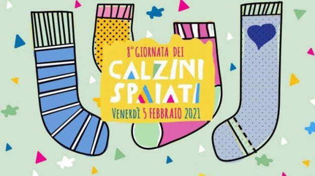 Cetraro La giornata dei calzini spaiati, Cosenza, Cronaca