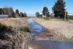 Corigliano, un fiume di liquami fognari dal torrente Frascone