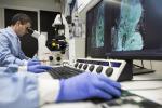 Covid, in netto calo le diagnosi di malattie rare