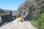 Gualtieri Sicamino', ecco dove ha perso la vita il giovane ciclista Giuseppe Milone