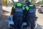 Reggio Calabria, sequestrate quattro ceste di pane in pessime condizioni