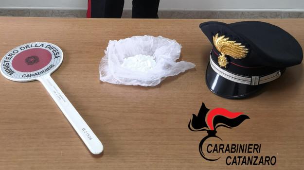 carabinieri palermiti, cocaina, due arresti, padre e figlio, Catanzaro, Cronaca