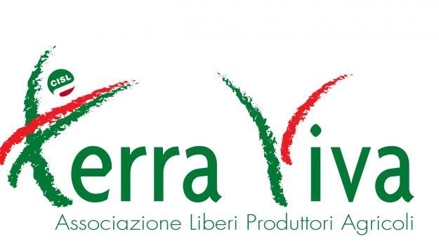 agricoltura, arcea, recovery fund, terra viva, Francesco Fortunato, Calabria, Cronaca