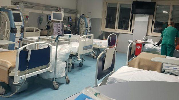 ospedale Iazzolino, vibo valentia, Catanzaro, Cronaca