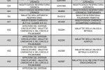 Vaccini in Calabria, soggetti fragili: ecco i codici delle esenzioni - PDF