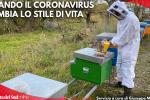 Coronavirus, la fuga da Catanzaro per vivere in campagna
