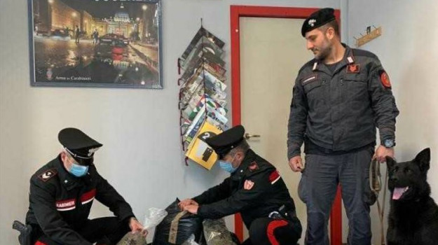 carabinieri, ndrangheta, Cosenza, Cronaca