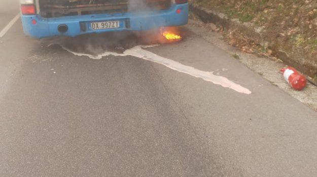 autobus in fiamme, ferrovie della calabria, luzzi, Cosenza, Cronaca