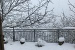 Il Cosentino ammantato di bianco, neve anche a bassa quota