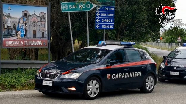 arresti, latitanza Germania, taurianova, Reggio, Cronaca