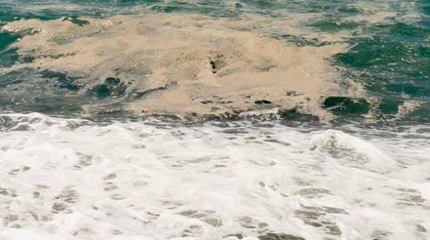 alleanza per salvare il mare, mar tirreno cosentino, sit-in protesta, Cosenza, Cronaca