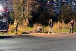 Rossano, auto finisce fuori strada. Due feriti trasferiti in ospedale