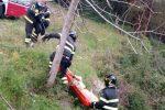 Cane caduto in un fiume e salvato dai vigili del fuoco
