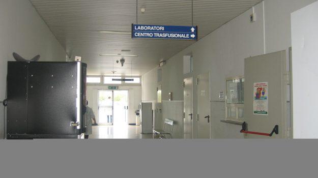 centro trasfusionale, ospedale lamezia, Domenico Fusto, Nicolino Panedigrano, Catanzaro, Cronaca