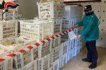 San Lorenzo del Vallo, sequestrati 13 quintali di pane non tracciabile