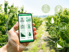 """Venture capital, Enpaia """"Puntiamo sull'agritech investendo 15 mln"""""""