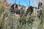 Cosenza, 60enne muore schiacciato dal suo trattore a Cervicati