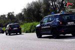 Aziende agricole irregolari nella Piana di Gioia Tauro: sanzioni per 14mila euro
