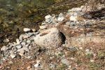 Ritrovato un manufatto granitico di 300 chili del II secolo a.C. nel Cosentino
