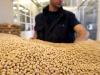 Anga e Confagricoltura, pianificazione e policy per mercato della soia