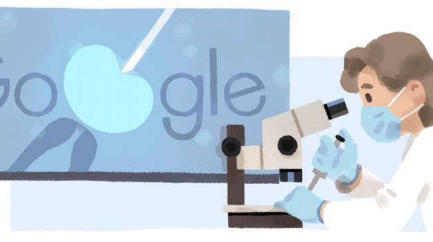 Doodle di Google, Anne McLaren, Sicilia, Cultura