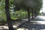 Messina, via i dossi dalla Circonvallazione: aggiudicati gli ultimi lavori