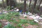 Rifiuti di ogni tipo scaricati nei pressi della pineta di Siano a Catanzaro