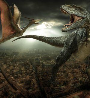 """Cina: scoperta """"pista da ballo"""" per dinosauri"""