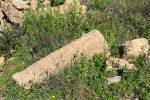 Individuato a Belvedere Spinello un antico insediamento di epoca greca risalente al VI secolo a.c.