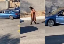 Parcheggio in retromarcia: il video di questa guidatrice è virale La donna tenta di parcheggiare in parallelo la sua auto - CorriereTV