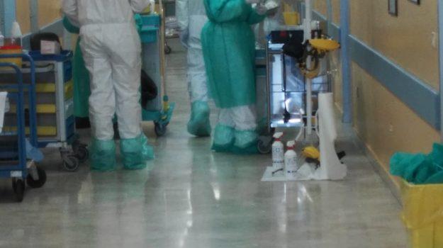 reggio calabria, vaccini anti covid, Reggio, Cronaca