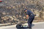 Lattarico, appiccò incendio in un bosco, piromane 41enne denunciato