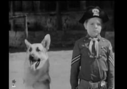 Rin-Tin-Tin, la celebre sigla del telefilm L'attore Lee Aaker, che interpretava il piccolo Rusty, è morto - Corriere Tv