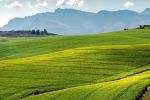 Slow Food presenta programma con Fao su patrimonio agricolo mondiale