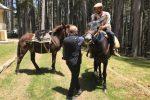 Da Pantelleria a Torino sul dorso di un mulo, i viaggiatori di Woodvivors al Parco della Sila