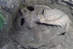 Dall'agro di Polistena riemergono resti d'età protostorica
