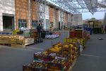 Reggio, a 10 anni dall'occupazione niente è cambiato per il mercato di Mortara