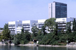 Roche per la Medicina di Precisione, premiato il Lazio con 50.000 euro
