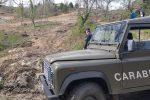 Lavori di dissodamento abusivi, sequestrata area boscata a San Giovanni in Fiore