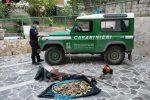 Pesca di frodo con generatore di corrente: 3 denunce a Cotronei durante un controllo
