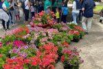 """Vibo Valentia, la frazione Porto Salvo """"Borgo dei fiori"""""""