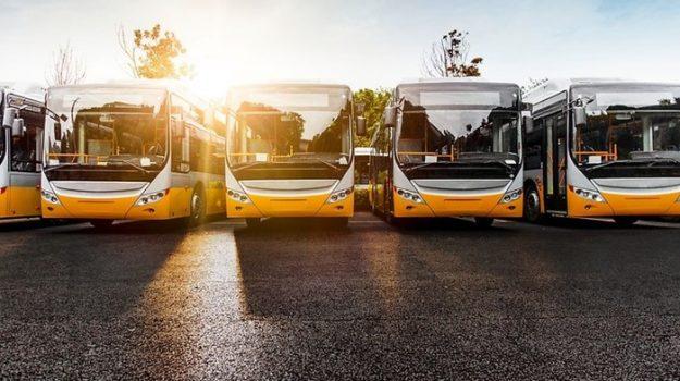 autobus, immatricolazioni mezzi pesanti, trasporti  calabria, Calabria, Cronaca