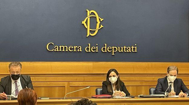 tirocinanti calabresi, Graziano Di Natale, Calabria, Politica